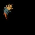 Chameleon Trips Logo